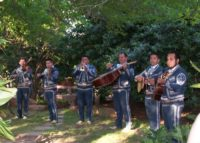 Mariachi de Oro serenades the guests at our 20th Anniversary Celebration May 2013